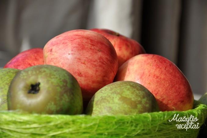 Obuolių ir kriaušių tyrelė