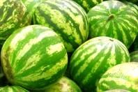 Skaniausi arbūzai būna vasaros pabaigoje ir rudens pradžioje