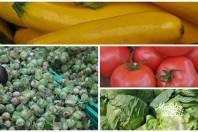 Vaisiai ir daržovės rugsėjį.