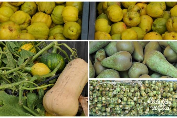 Rudens daržovės ir vaisiai
