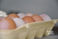Kada mažyliui duoti ragauti kiaušinio?