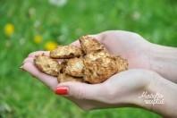 Greitai ir lengvai paruošiami sausainukai